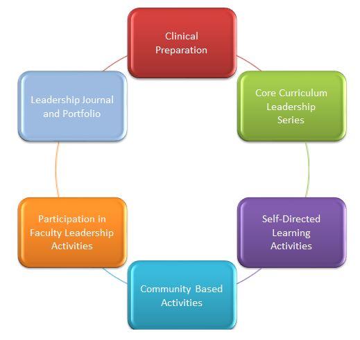 curriculum-components