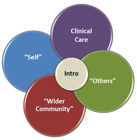 """MCH Curriculum venn diagram. """"Intro"""" in the middle circle with four larger circles surrounding it. The four other circles read """"Self,"""" """"Clinical Care,"""" """"Others."""" and """"Wider Communuty."""""""
